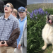 A Twitter Account Is Out To Prove That Chris Evans Is A Golden Retriever, And We Can't Stop Laughing